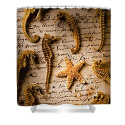 Seahorses And Starfish On Old Letter Shower Curtain by Garry Gay