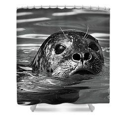 Seal In Water Shower Curtain