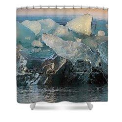 Seal Nature Sculpture Shower Curtain by Allen Biedrzycki