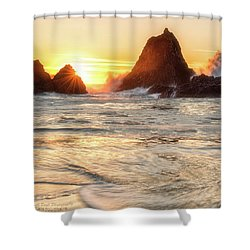 Seal Rock  Shower Curtain