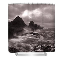 Seal Rock Thunder Shower Curtain