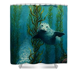 Seals Of The Sea Shower Curtain