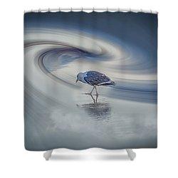 Searcher Shower Curtain