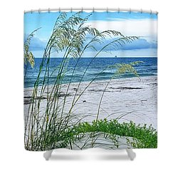 Seascape Serenity Shower Curtain