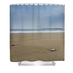 Shower Curtain featuring the photograph Lone Seashell by Alana Ranney