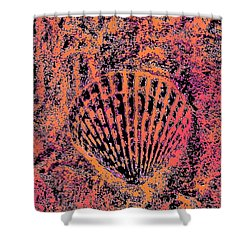 Seashell Delight Shower Curtain