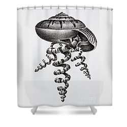 Seashell Forms Shower Curtain by James Williamson