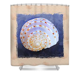 Seashell Iv Grunge With Border Shower Curtain by Jai Johnson
