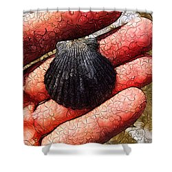 Seashells By The Seashore Shower Curtain