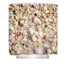 Seashells By The Seashore Shower Curtain