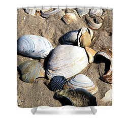 Shower Curtain featuring the photograph Seashells On The Beach by John Rizzuto