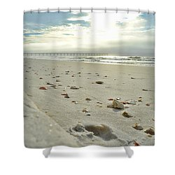 Shower Curtain featuring the photograph Seashells On The Seashore by Renee Hardison