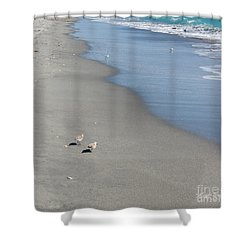 Seaside Holiday Shower Curtain by Michelle Wiarda