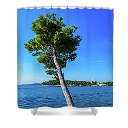 Seaside Leaning Tree In Rovinj, Croatia Shower Curtain