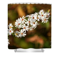Season Delights Shower Curtain
