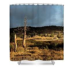 Season Of The Witch Shower Curtain