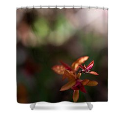 Shower Curtain featuring the photograph Seasons Beginning by Cherie Duran
