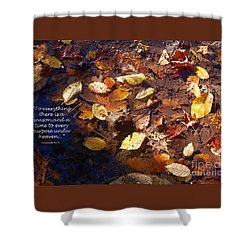Shower Curtain featuring the photograph Seasons by Diane E Berry