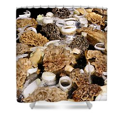 Season's First - Morel Mushrooms Shower Curtain by Angie Rea