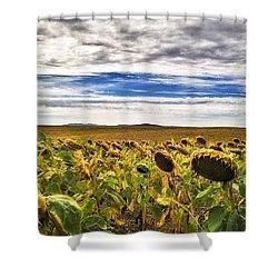 Seasons In The Sun Shower Curtain