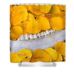 Seasons Past Shower Curtain