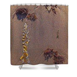Seaweed On Clayhead Beach Shower Curtain by Todd Breitling
