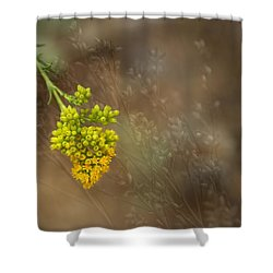 Second Summer Shower Curtain