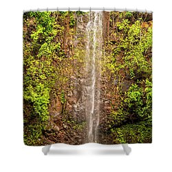 Secret Falls Shower Curtain by Brian Harig