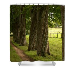 Secret Path Shower Curtain by Mary Mikawoz