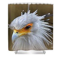 Shower Curtain featuring the photograph Secretary by Lisa L Silva