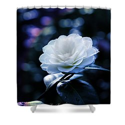 Secrets Of Nature Shower Curtain