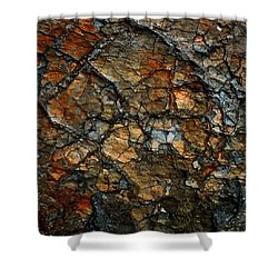 Sedimentary Abstract Shower Curtain by Dave Martsolf
