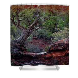 Sedona #1 Shower Curtain