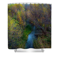 Sedona Stream Shower Curtain