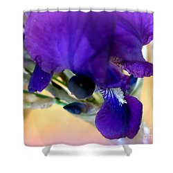 Sedona Wild Iris Shower Curtain by Marlene Rose Besso