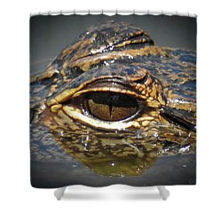 See Me Shower Curtain