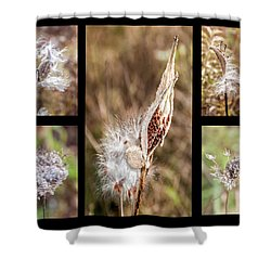 Seed Collage Shower Curtain