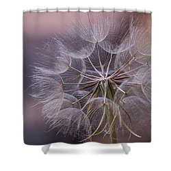 Shower Curtain featuring the photograph Seed Pods by Cathy Donohoue