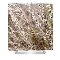 Seeds Of Autumn Shower Curtain