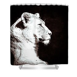 Shower Curtain featuring the photograph Seeing Double II by Wade Brooks