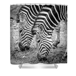 Shower Curtain featuring the photograph Seeing Double by Wade Brooks