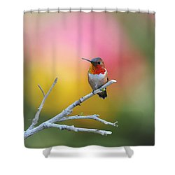 Seeing Red Shower Curtain by Lynn Bauer