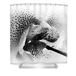 Seeing Spots Shower Curtain