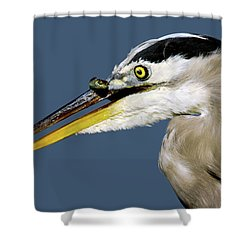 Seeing Your Captor Eye To Eye Shower Curtain