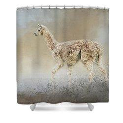 Seeking Shower Curtain