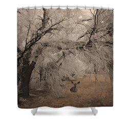 Shower Curtain featuring the photograph Seeking Shelter by Karen Slagle