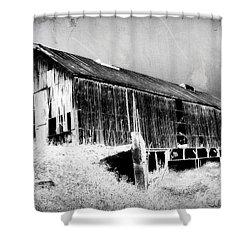 Seen Better Days Shower Curtain by Julie Hamilton