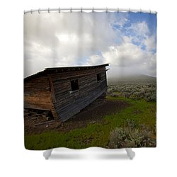 Seen Better Days Shower Curtain by Mike  Dawson