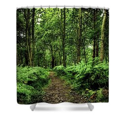Seeswood, Nuneaton Shower Curtain