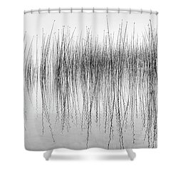 Seismograph Shower Curtain